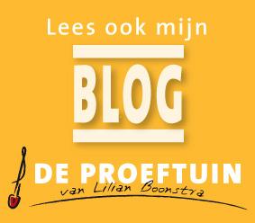 Lilianboonstrablog